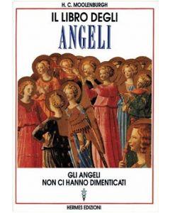 IL LIBRO DEGLI ANGELI di H.C. Moolenburgh